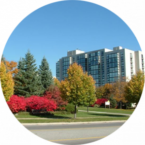 Large white building with lots of windows and colourful green and red trees in front in Richmond Hill, Canada.