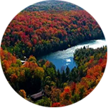 A scene of green and red topped trees, with a river in the opening of the trees in Caledon, Canada.